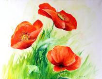 drei Mohnblüten von Ingrid Clement-Grimmer