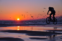 Cycling To Fly, Sea, Portugal von Joao Coutinho