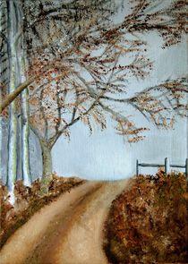 Winter lane by Wendy Mitchell