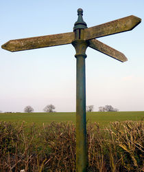 Which Way? by Tom Bernert