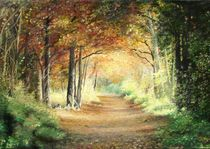 Tunnel in The Wood by Apostolescu  Sorin