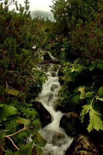 Paradise (Waterfall) by Alex Beldea