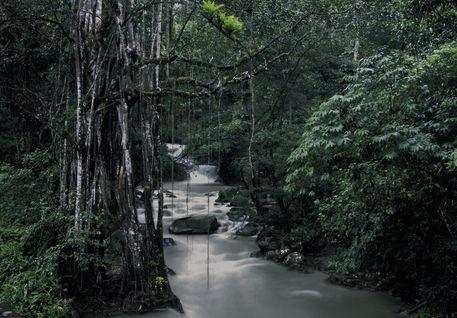 Rainy Season Stream in Minga