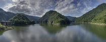 Reservoir at Anchicaya von Robert Oelman
