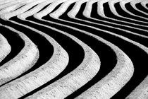 Lines by filipo-photography