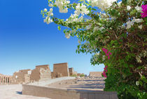 Flowers temple of Isis, island of Philae, Egypt. von David Love