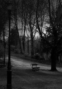 Moody park bench on path von Sarah Clark