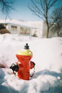 fire hydrant  by Nick Kotecki