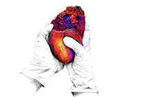 Heart von Anka Kuprian
