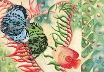 Cellular Fish by Stuart Hatt