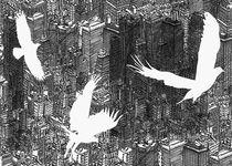 Birds von David Bushell