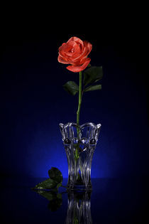 Rose, Greeting card on Blue back ground von Soumen Nath