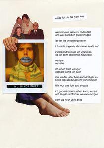 wieso ich die taz nicht lese by Herbert Hindringer