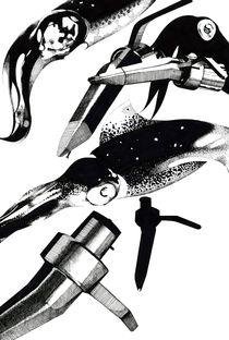 SQUID by SIMON HOWARD