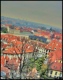 View of Prague by Julia Minina