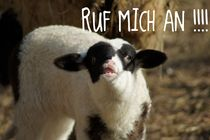 Ruf mich an!!! by Ina Hartges