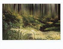 Farn by Michael Guntenhöner