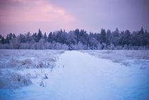 vanilla sky von Katerina Shestakova