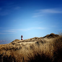 Img-8664-bea-sylt-impressions-29