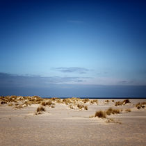 Img-8661-bea-sylt-impressions-31