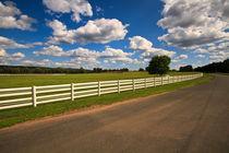 White fence von Scott Smith