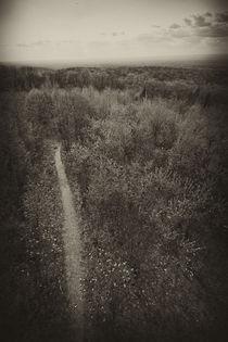 Off the path von Scott Smith