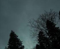 Night by Iulia Stancu