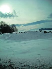 Winter wonder by Iulia Stancu