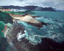 Hermanus harbour von Monika Mazur
