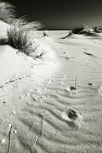 Sylt Impressions #35 by Melanie Hinz