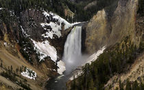 Yellowstone - Lower Falls von tgigreeny