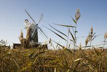 Cley Windmill von tgigreeny