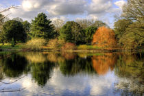 Autumn, Reflected by tgigreeny