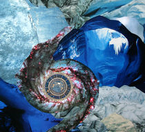 Stargate by Yvonne Pfeifer
