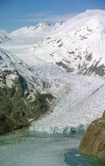 Glacier Bay, Alaska, USA von Willy Matheisl