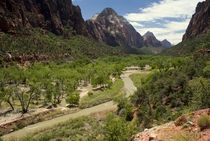 Zion Canyon by tgigreeny