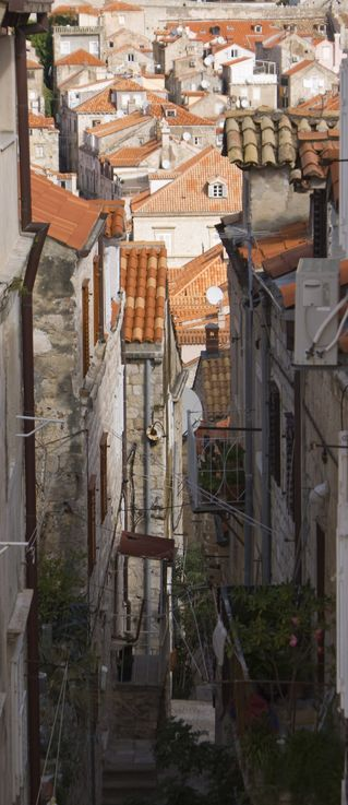 Steps-and-roofs