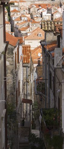 Roofs and Alleyways von tgigreeny