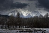 Snowstorm Over the Tetons von tgigreeny