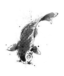 Japanese carp by cyril blondeau