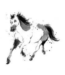 Horse by cyril blondeau