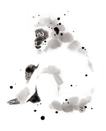 japanese monkey by cyril blondeau