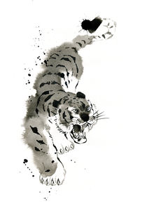 Tigre by cyril blondeau