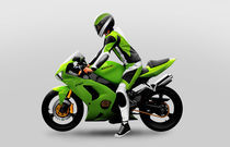 Kawasaki Ninja von Sander Sonts