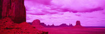 Rock formations on a landscape, Monument Valley, Arizona, USA by Panoramic Images