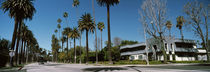 Palm trees along the road, Beverly Hills, Los Angeles County, California, USA von Panoramic Images