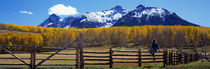 Panorama Print - Last Dollar Ranch, Ridgeway, Colorado, USA von Panoramic Images