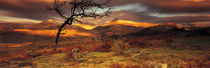 Snowdonia National Park, Wales, United Kingdom by Panoramic Images