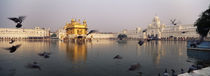 Reflection of a temple in a lake, Golden Temple, Amritsar, Punjab, India by Panoramic Images