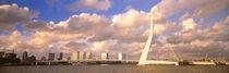 Netherlands, Holland, Rotterdam, Erasmus Bridge by Panoramic Images